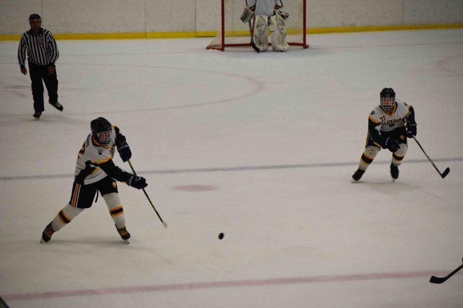 Blackhawk hockey: Season preview