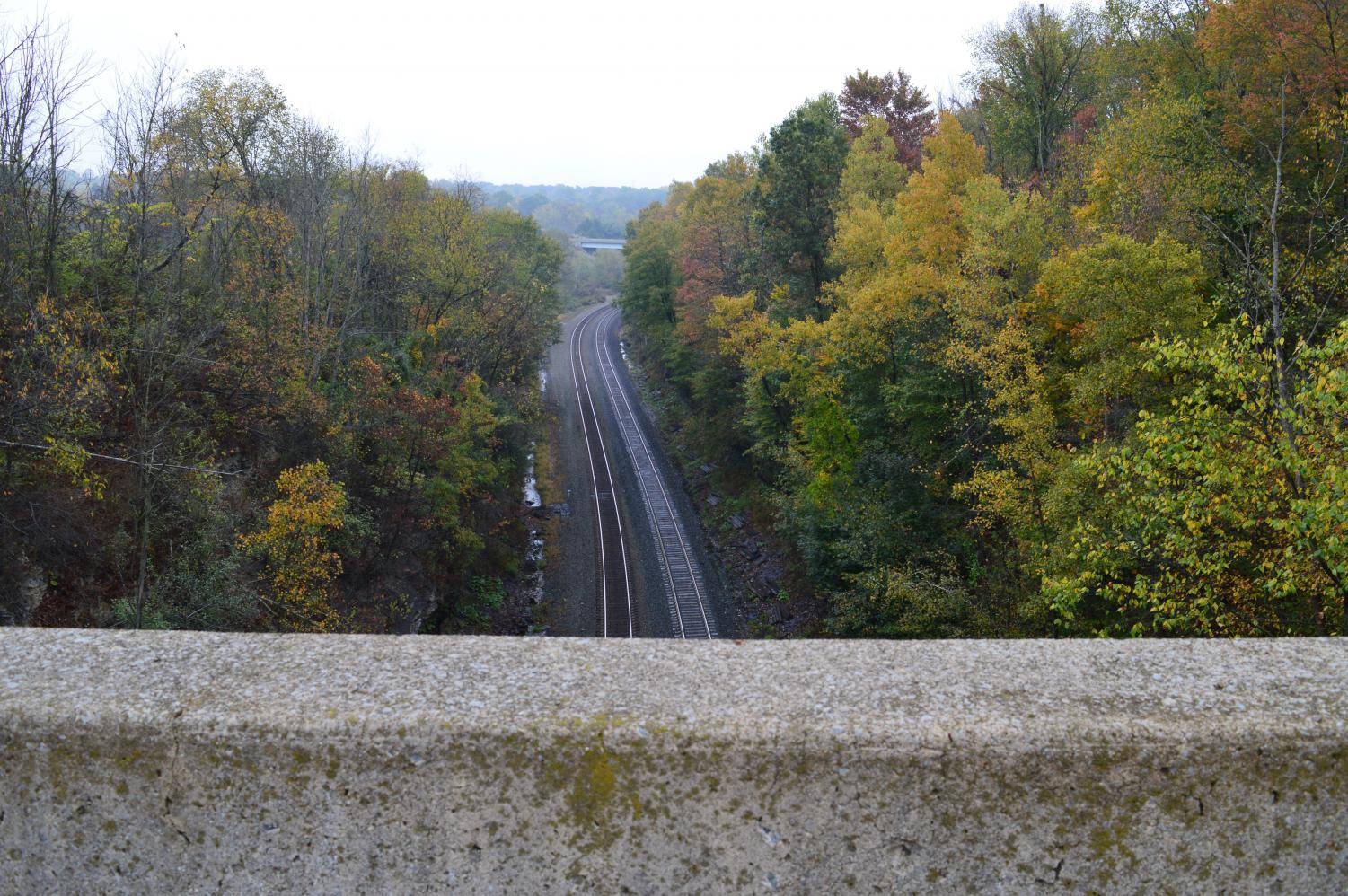 A woman who was killed when she fell 73 feet from the edge Summit Cut Bridge supposedly haunts the area.