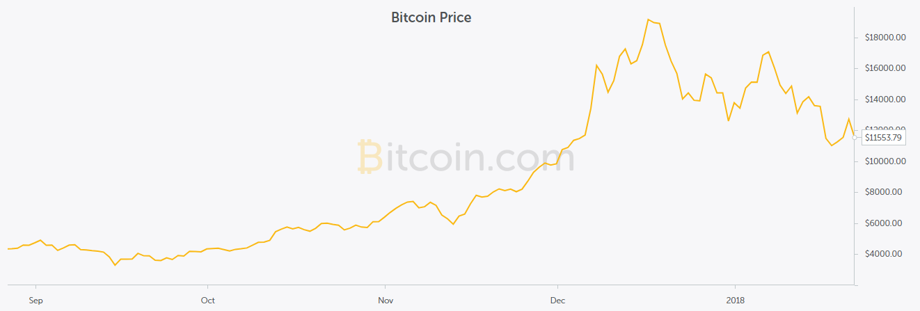 This shows the graph of Bitcoin over the past year; Bitcoin is just one of the many cryptocurrencies available to potential investors.