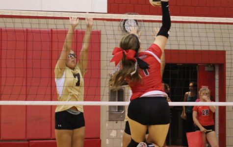 Volleyball team hopes to be invigorated with season in full swing