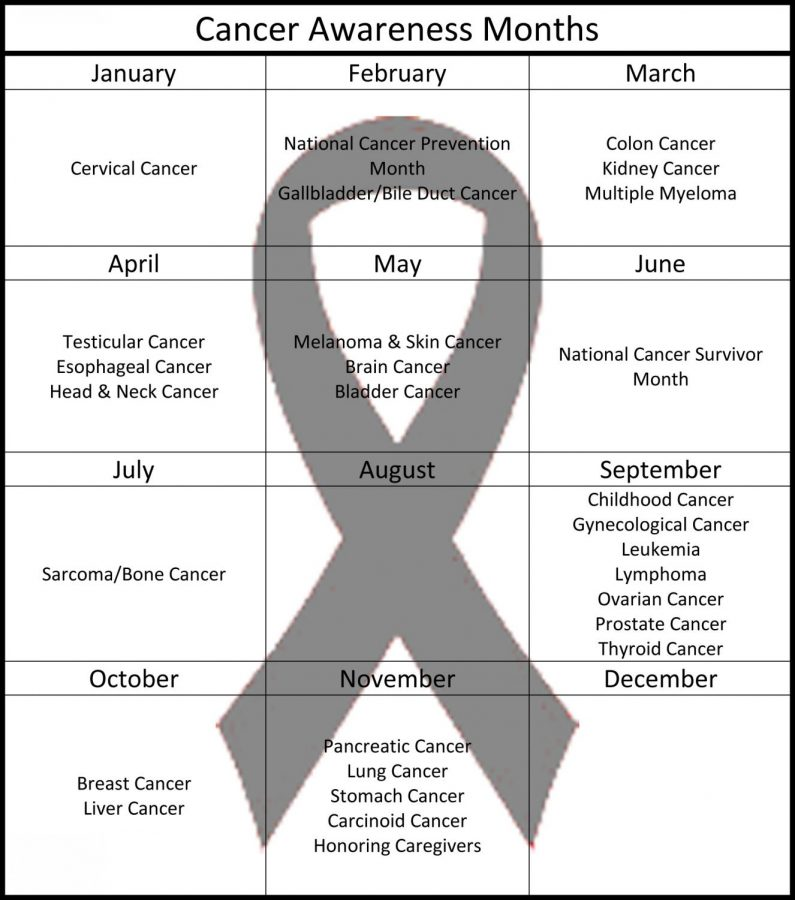 A++calendar+of+the+various+cancer+awareness+months.+Some+months+do+not+have+a+specific+cancer+they+are+focusing+on%2C+while+others+may+have+up+to+seven.