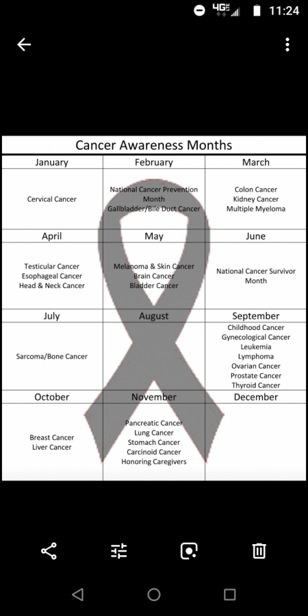 A  calendar of the various cancer awareness months. Some months do not have a specific cancer they are focusing on, while others may have up to seven