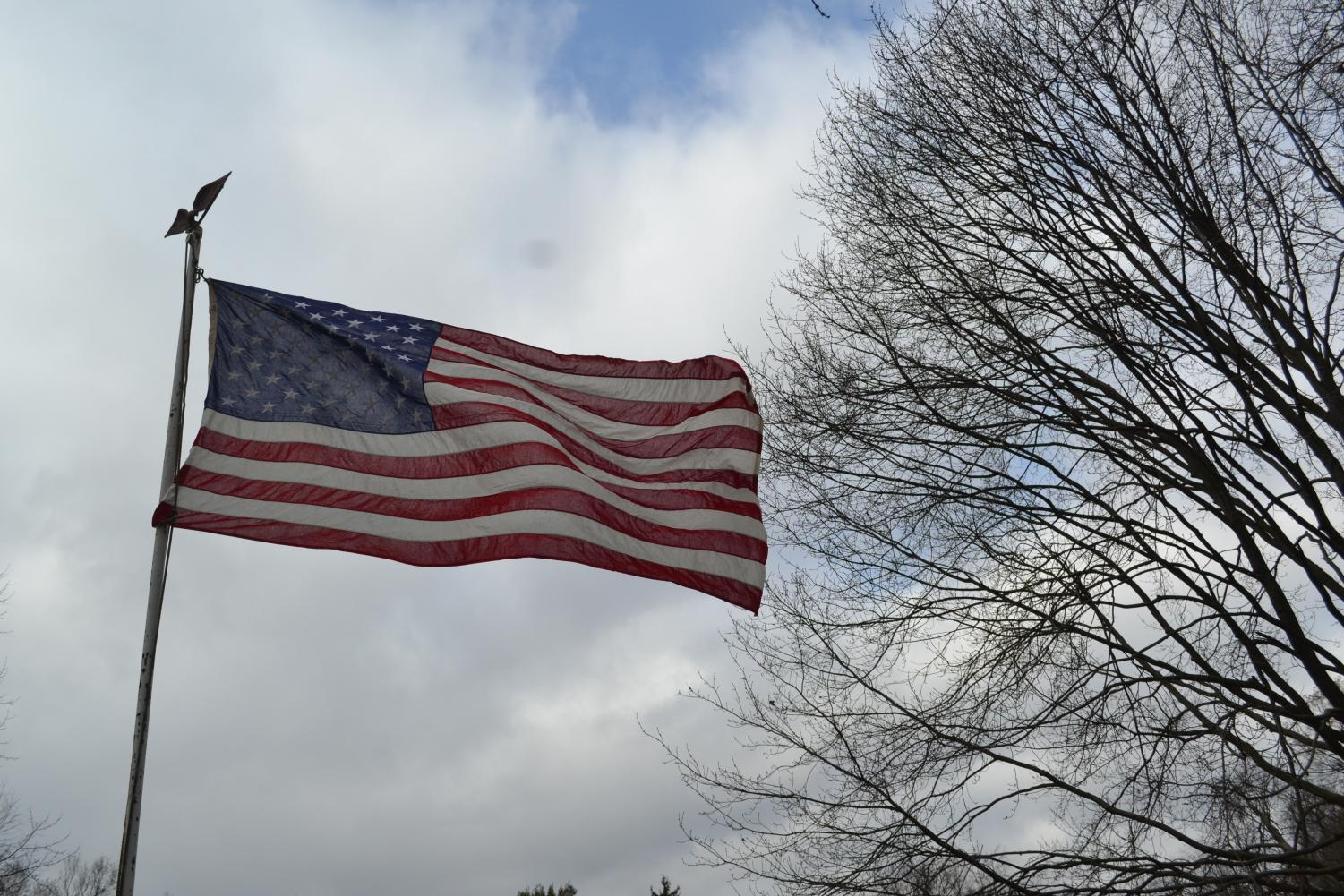 "The American flag billows in the wind, and the tree to the right symbolizes the many ""branches"" and the ways to success there are."