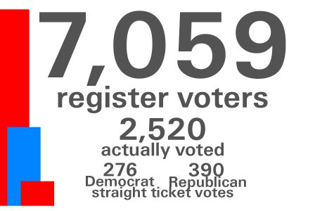 More than 2,500 local citizens vote in November election